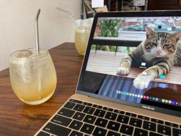 エコでおしゃれなステンレスストローを使って、冷たい飲み物をさらに美味しく飲もう!